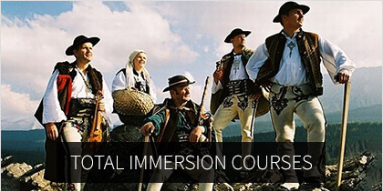 Total immersion courses